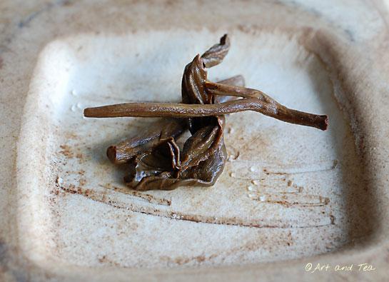 Marinyn Est Kenya Wet Leaf 080313
