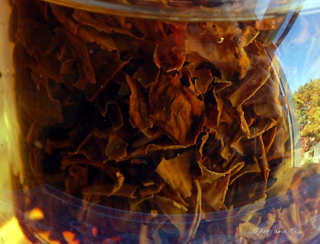 JungpanaEstate 2nd Flush Darjeeling Steep 09-28-13