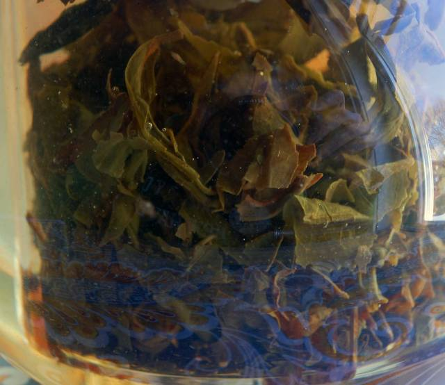 Japanese Oolong Steep 02-01-14