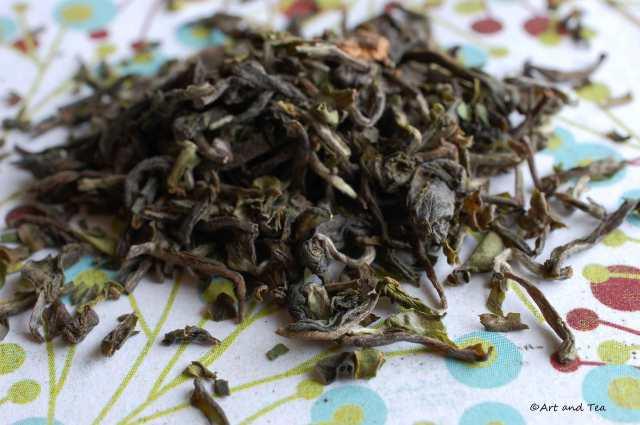 Marionbarie Est Dry Leaf 03-29-14