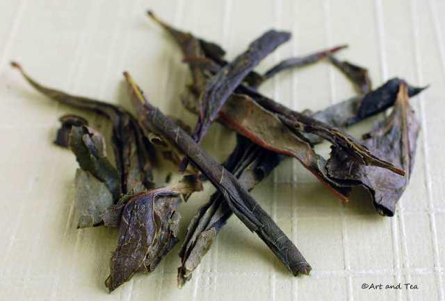 PCM Fairy Oolong Dry Leaf 06-14-14