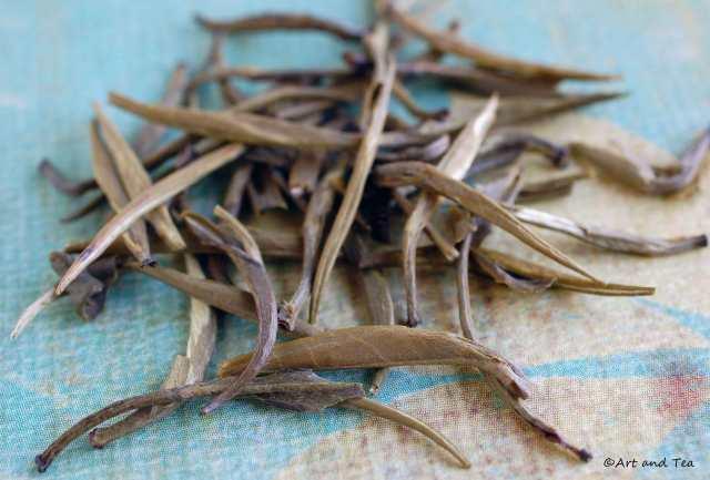 Qing Zhen Dry Leaf 06-21-14
