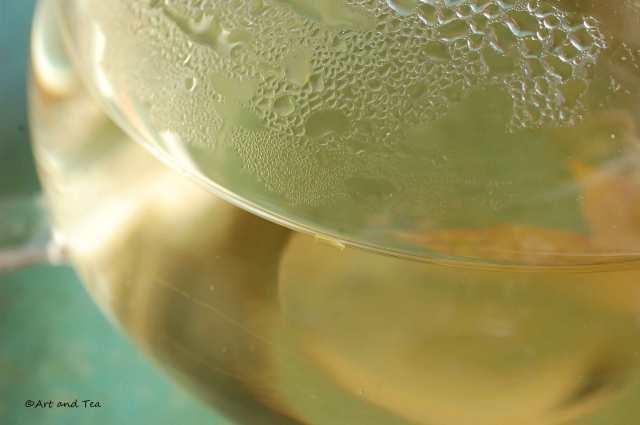 Qing Zhen Teapot 06-21-14