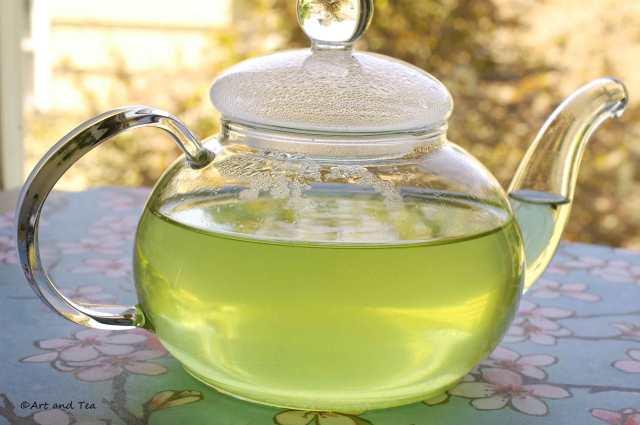 Saemidori Sencha Teapot 08-09-14