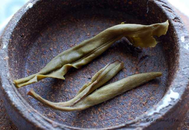 Drum Mountain White Wet Leaf 09-27-14