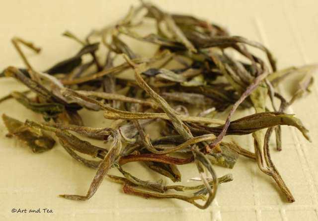 Huangshan Mao Feng Dry Leaf 09-13-14