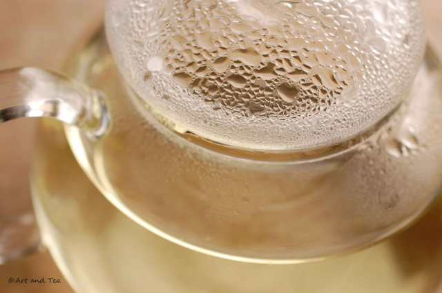 Huangshan Mao Feng Teapot 09-13-14